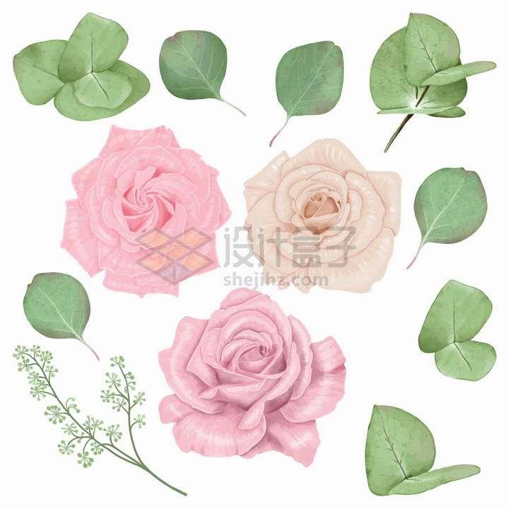 粉红色和淡黄色的玫瑰花花朵以及叶子png图片免抠矢量素材