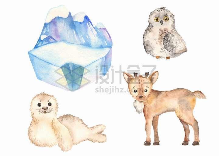 卡通冰山猫头鹰海豹驯鹿宝宝水彩画插图png图片免抠矢量素材
