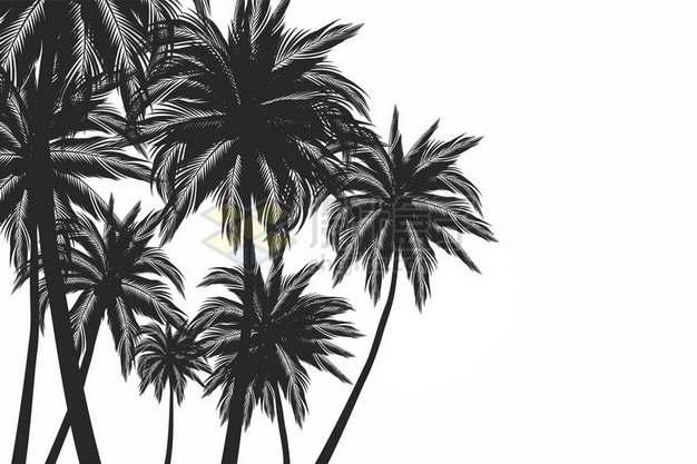 高清椰子树剪影288984png图片素材
