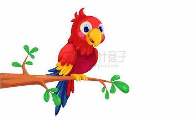 枝头上的卡通红色鹦鹉png图片免抠矢量素材