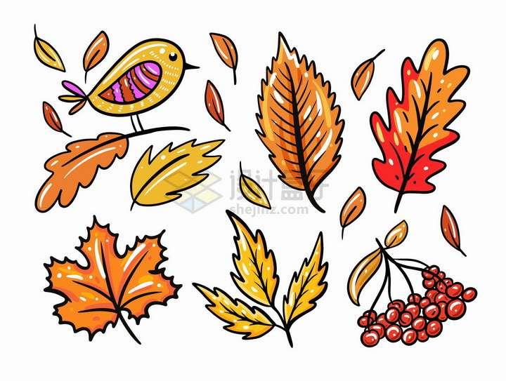秋天里手绘红色枫叶树叶卡通小鸟和果实png图片免抠矢量素材