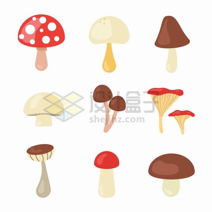 9款扁平化风格的蘑菇png图片免抠矢量素材