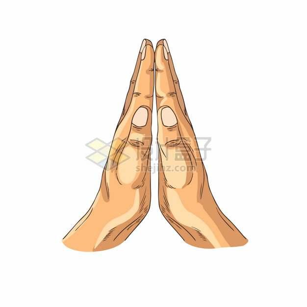 双手合十手势255943png图片素材