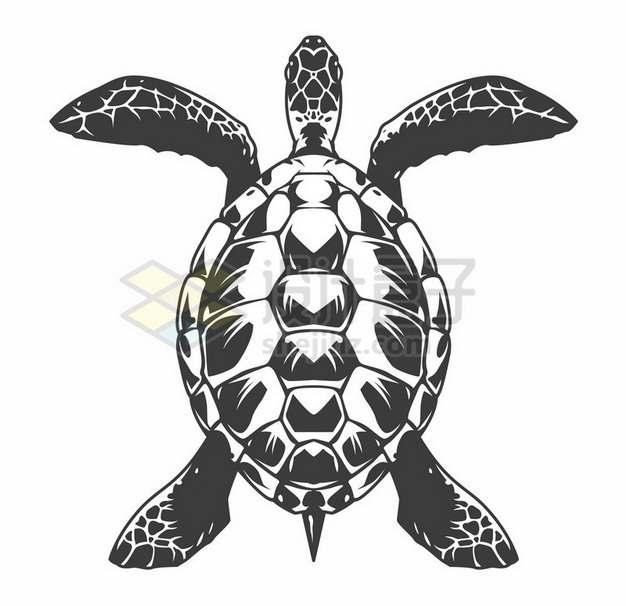 黑白画风格大海龟719124png图片素材