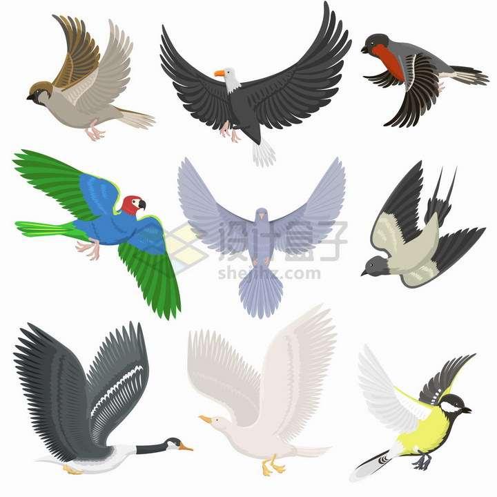 各种卡通飞行中的鸟儿麻雀老鹰鸽子鹦鹉鸭子等png图片免抠矢量素材