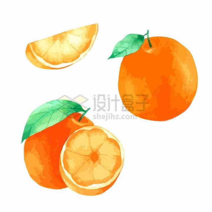 切开的橙子彩绘风格美味水果png图片免抠矢量素材