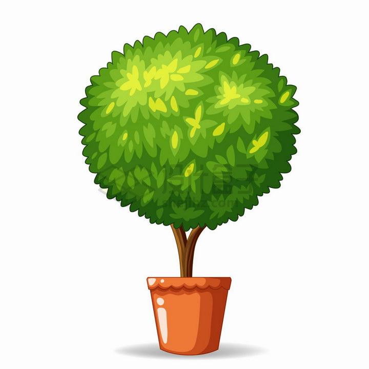 卡通花盆中的盆栽绿植小树png图片免抠eps矢量素材