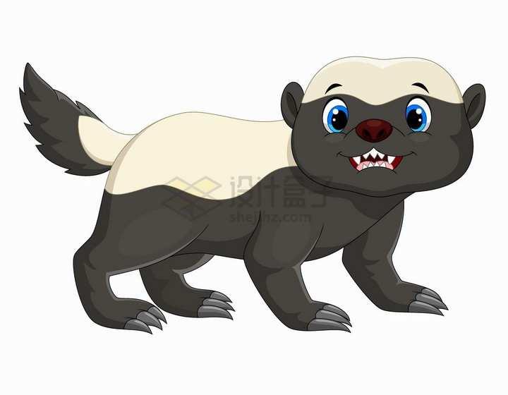 平头哥蜜獾可爱卡通动物png图片免抠矢量素材