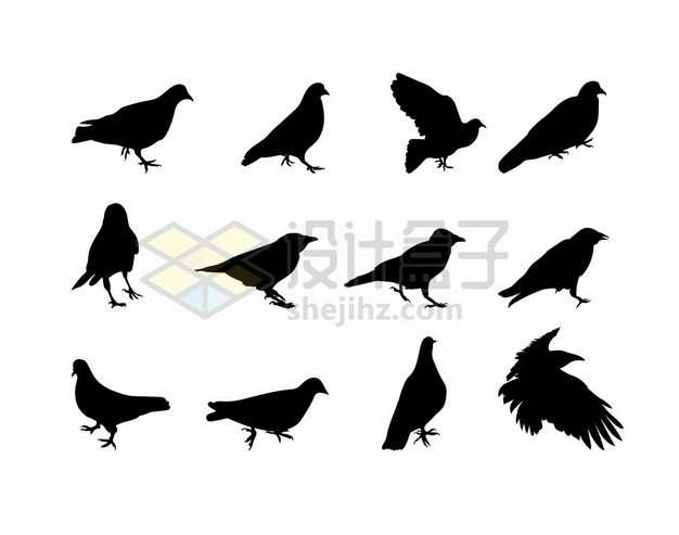 12款鸽子乌鸦等鸟儿剪影310070png矢量图片素材
