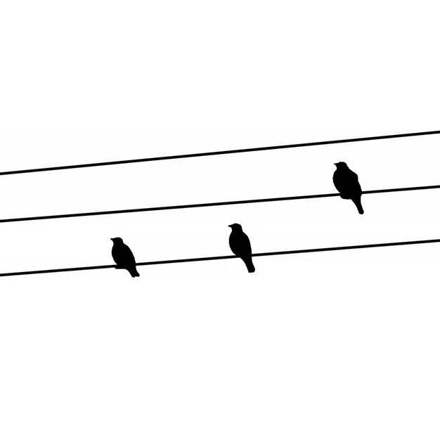 电线上的鸟儿剪影412387png图片素材