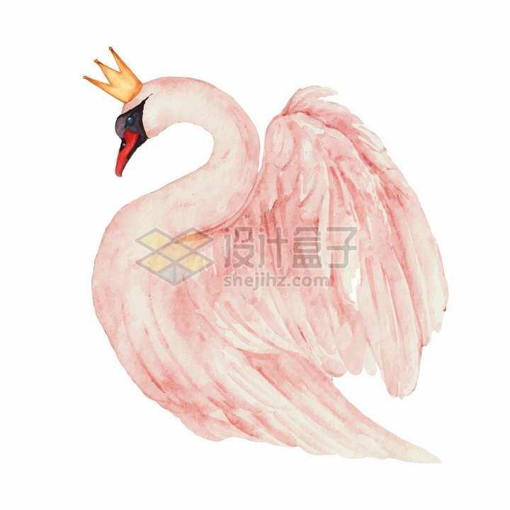 戴皇冠的粉红色天鹅水彩画png图片免抠矢量素材