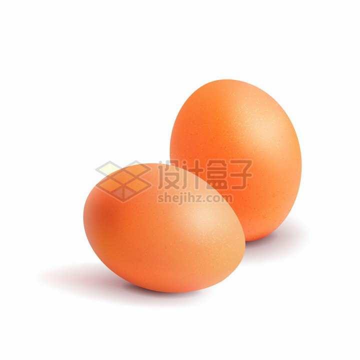 两颗逼真的鸡蛋png图片免抠矢量素材