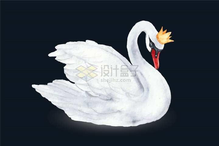 戴皇冠的白天鹅水彩画png图片免抠矢量素材