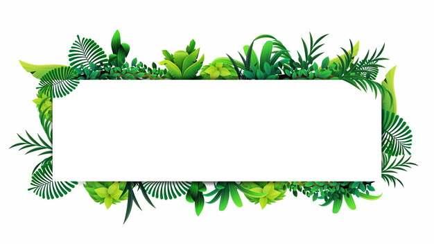 热带绿叶树叶装饰的长方形文本框标题框248421png图片素材