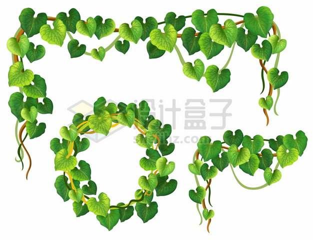 3款绿色树叶藤蔓装饰430761png图片素材