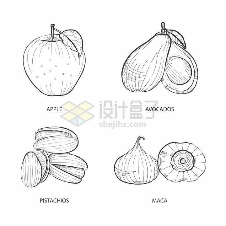苹果牛油果开心果秘鲁人参美味美食手绘素描插画png图片免抠矢量素材