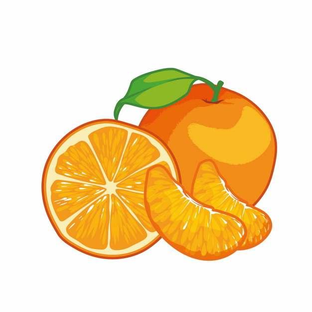 剥开的橘子彩绘插画621107png图片素材