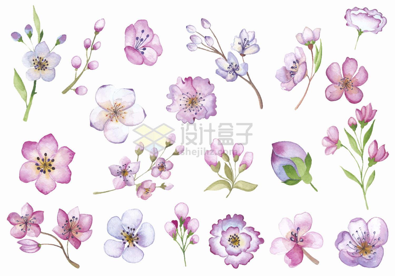 各种春天里盛开的桃花水彩画鲜花花卉png图片免抠矢量素材