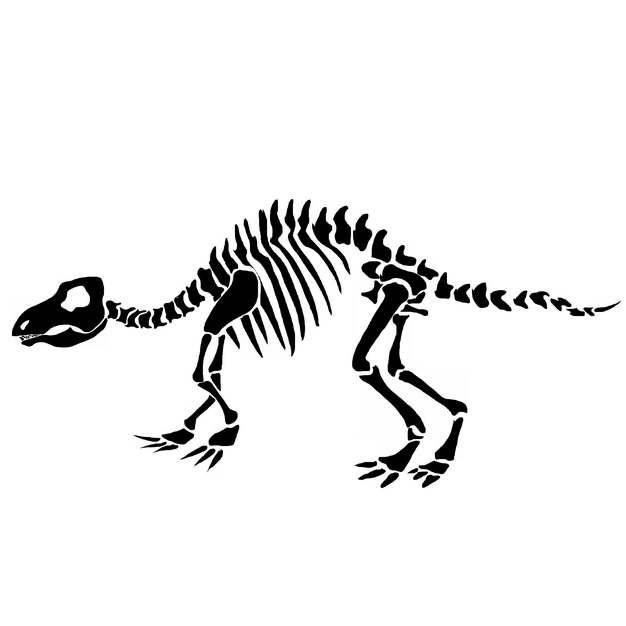 恐龙骨架化石剪影png图片免抠素材510900
