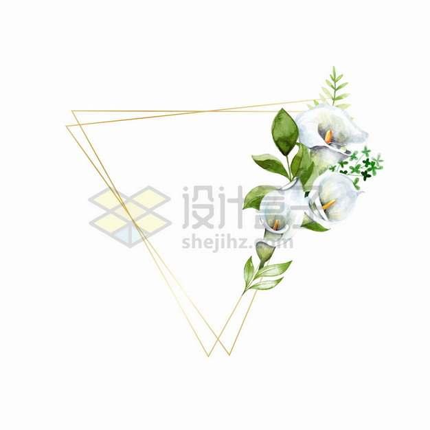 马蹄莲和金色三角形文本框边框水彩插画png图片素材