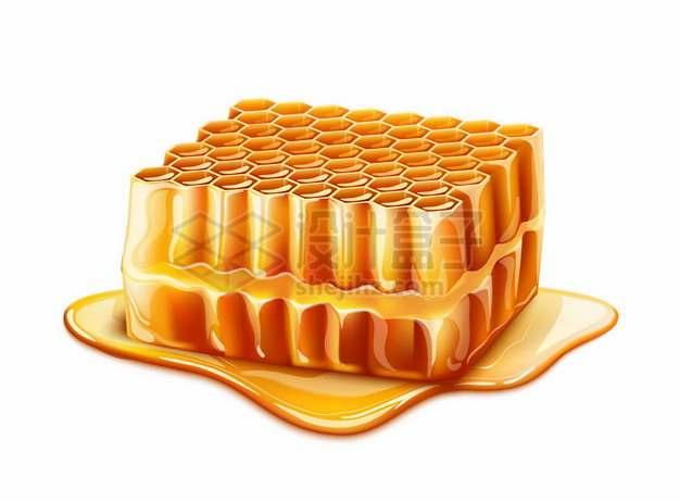 流淌着蜂蜜的蜂巢蜜598411png图片素材