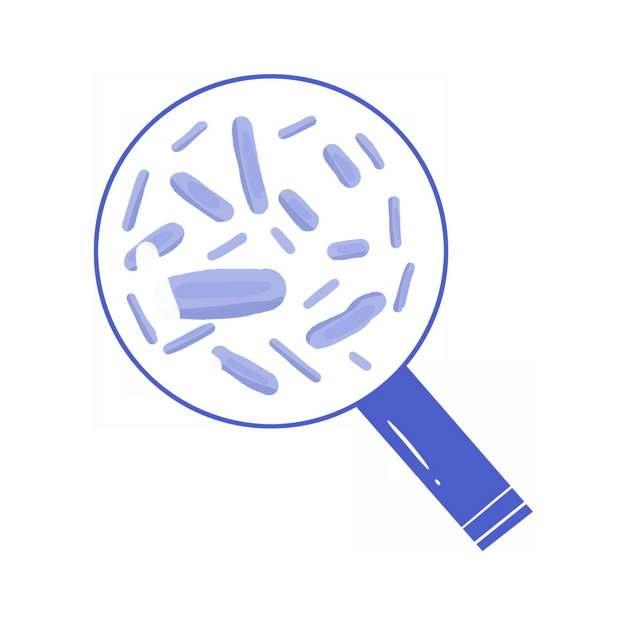 放大镜下的细菌细胞微生物915849png图片素材