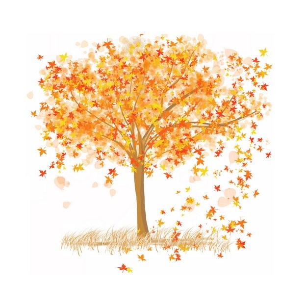 秋天枯黄的大树和飘落的叶子425023png图片素材 生物自然-第1张