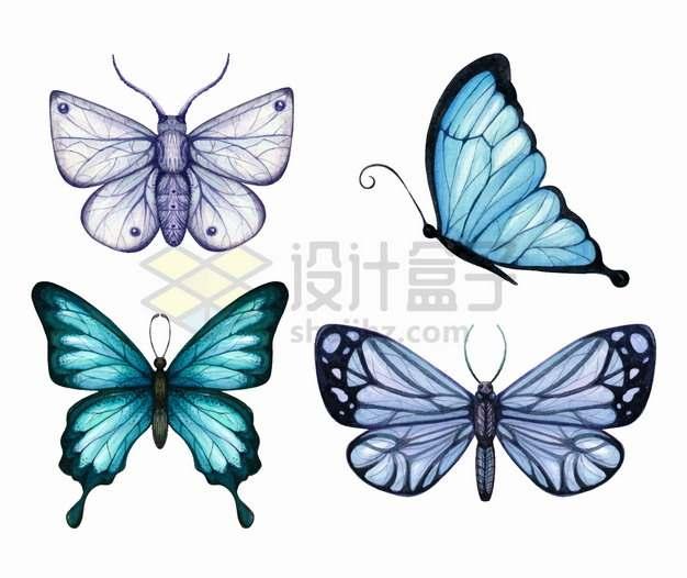 4种紫色蓝色的蝴蝶水彩插画png图片素材