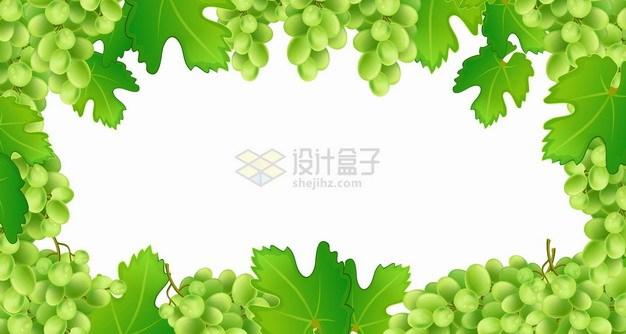 青绿色的葡萄树葡萄和叶子边框png图片素材 生物自然-第1张