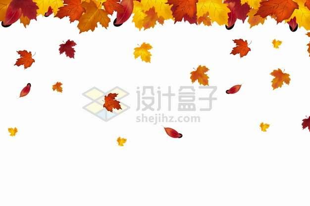 秋天飘落的红色黄色橙色棕色树叶枫叶png图片素材