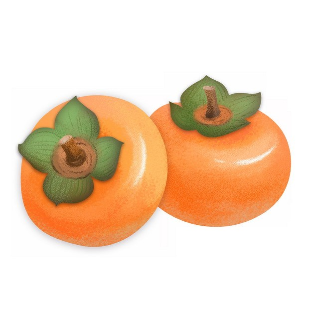 成熟的两个柿子240535png图片素材 生活素材-第1张