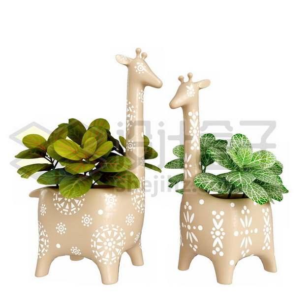 卡通花盆里的两种观赏植物绿植盆栽846377psd/png图片素材