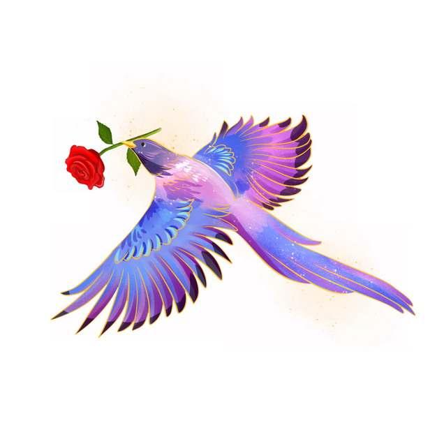 绚丽的喜鹊叼着红色玫瑰花506272png图片素材