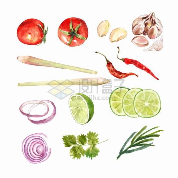 西红柿大蒜头干辣椒洋葱圈柠檬香菜等美味蔬菜水彩插画png图片素材