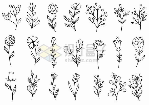 21款黑色涂鸦线条手绘花朵叶子图案png图片素材