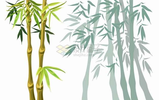 竹子竹叶和影子png图片素材