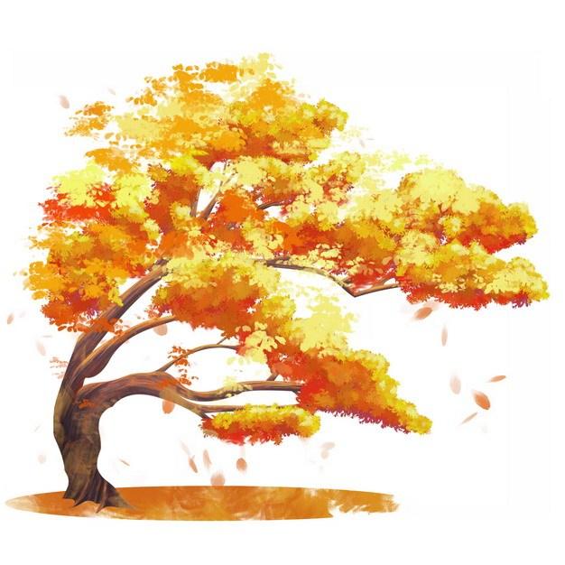 秋天金黄色的大树水彩插画946004png图片素材 生物自然-第1张