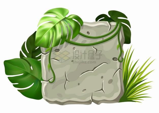 灰色的石板和热带雨林藤蔓png图片素材 生物自然-第1张