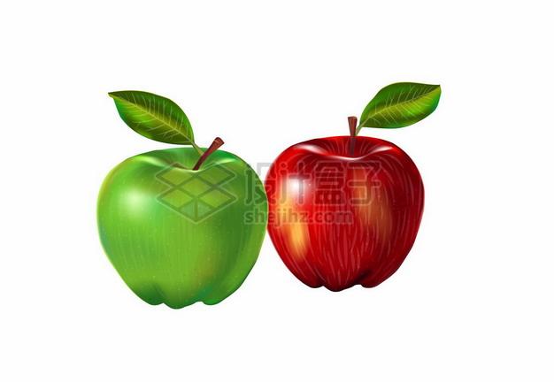 一颗青苹果和红苹果386793png矢量图片素材 生活素材-第1张