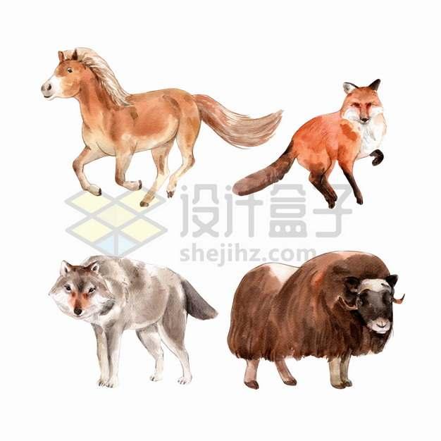 骏马狐狸野狼牦牛等水彩画动物png图片素材