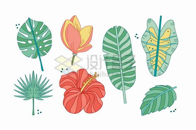 各种热带花卉和叶子手绘插画461205png图片素材