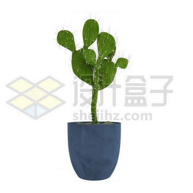 花盆里的仙人掌盆栽892960psd/png图片素材 生物自然-第1张