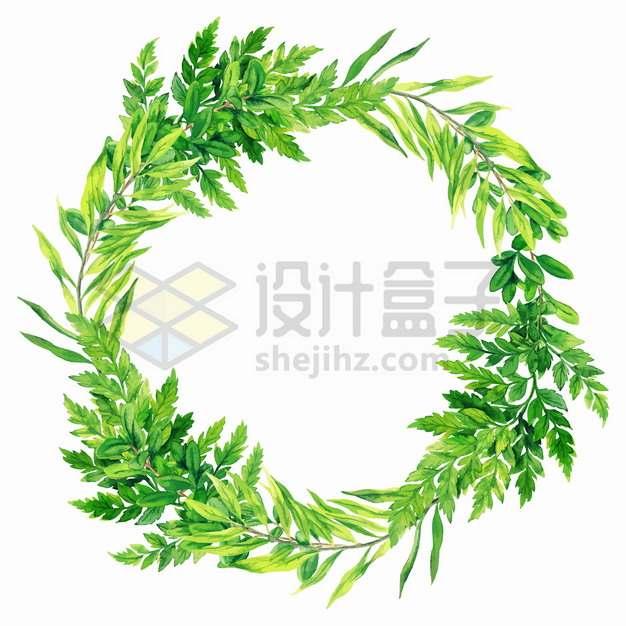 蕨类植物的绿色树叶组成的花环png图片素材