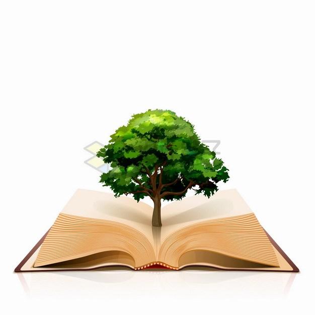 打开的复古书本上长出了一棵大树png图片素材 教育文化-第1张