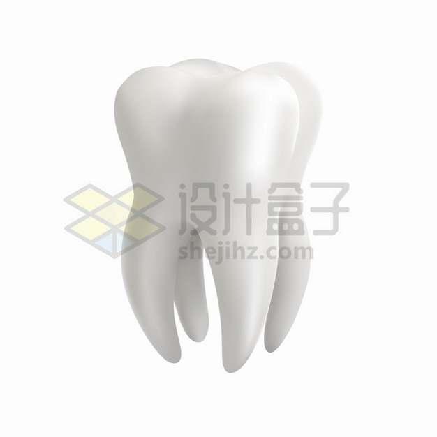 逼真的3D立体白色牙齿png图片素材