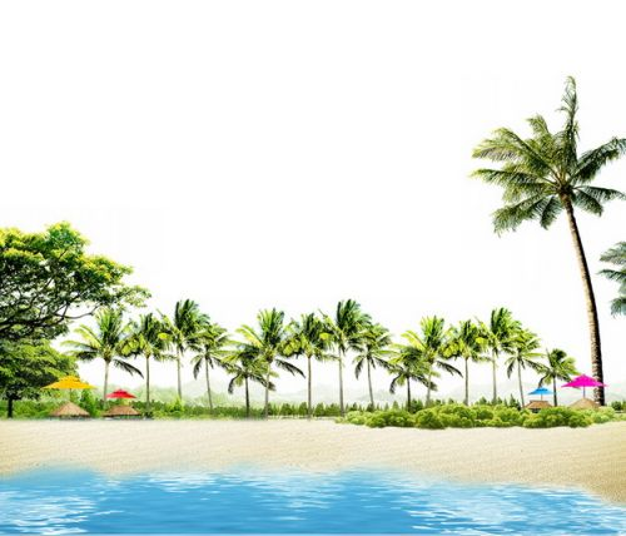 蔚蓝色大海和海滩已经椰子树旅游风景区520854png图片素材