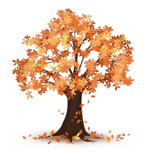 秋天落叶的大树827021png图片免抠素材 生物自然-第1张