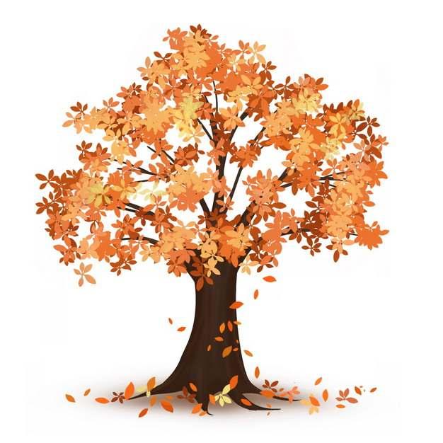 秋天落叶的大树827021png图片免抠素材