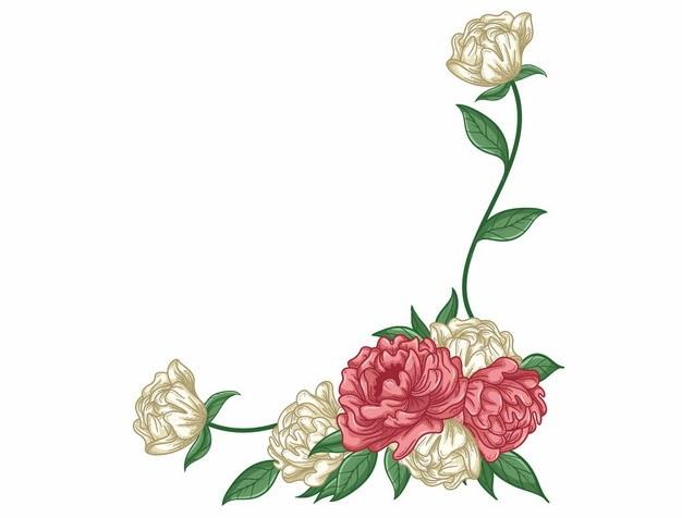 红色白色玫瑰花装饰手绘插画486388png矢量图片素材 生物自然-第1张
