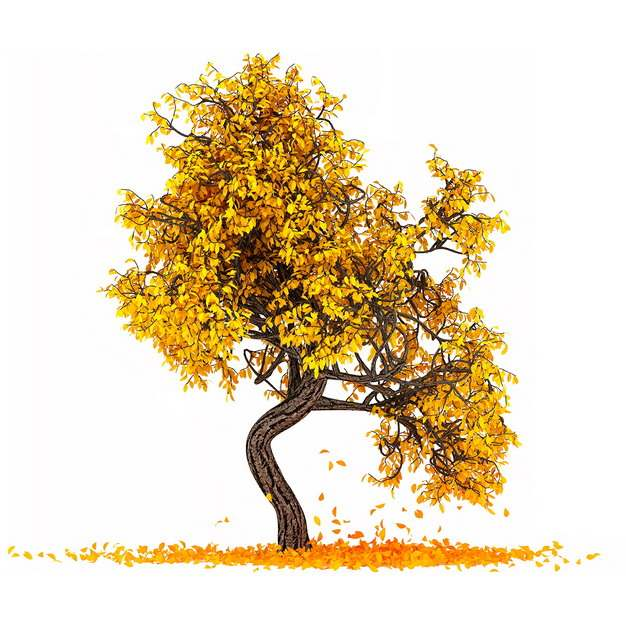 秋天金黄色树叶的大树手绘插画535538png图片免抠素材